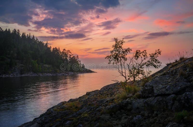 Colori delicati del tramonto fotografia stock