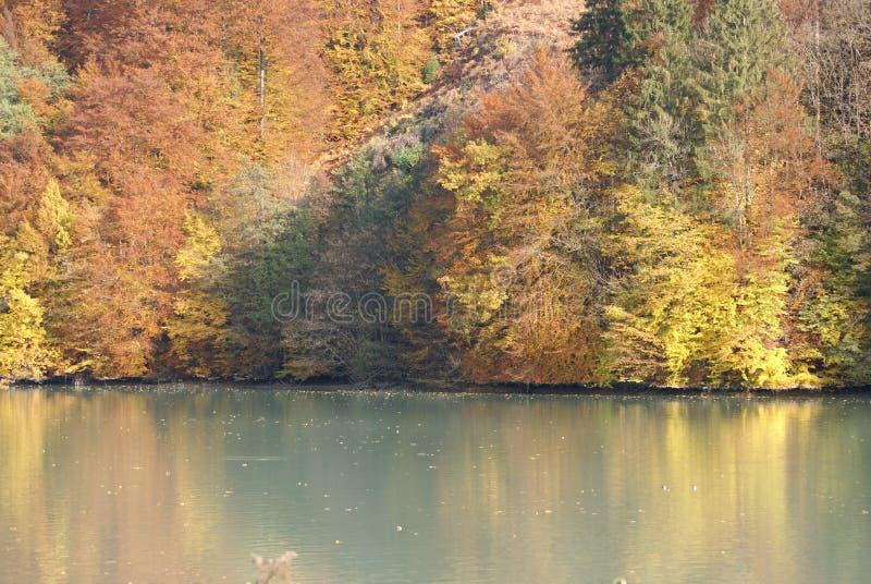 Colori di autunno - come centri faccia Outono fotografia stock
