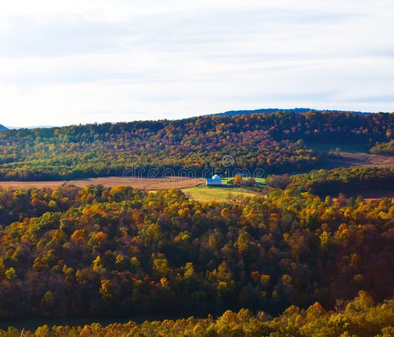 Colori di autunno della natura di WV fotografie stock