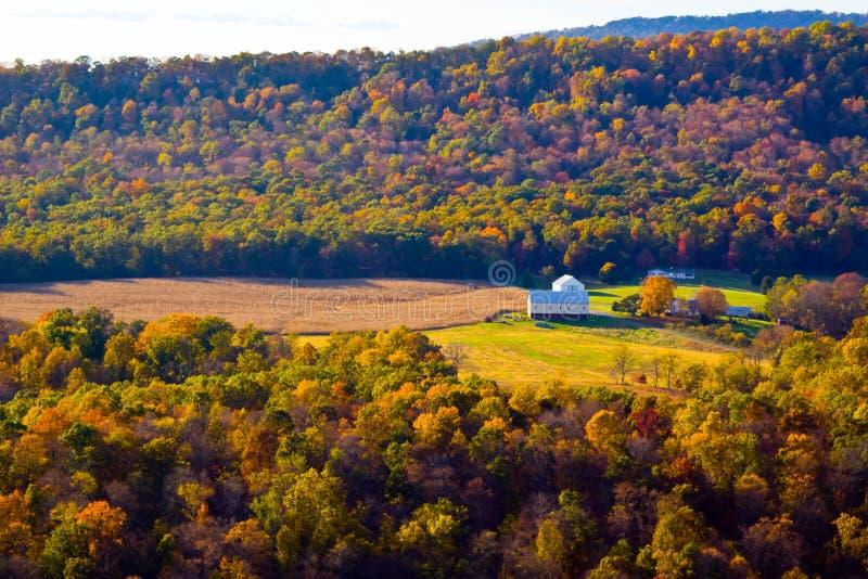 Colori di autunno della natura di WVA fotografia stock libera da diritti