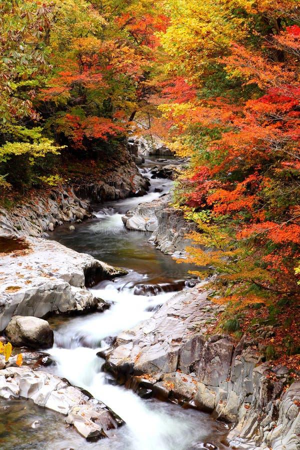 Colori di autunno della valle fotografie stock