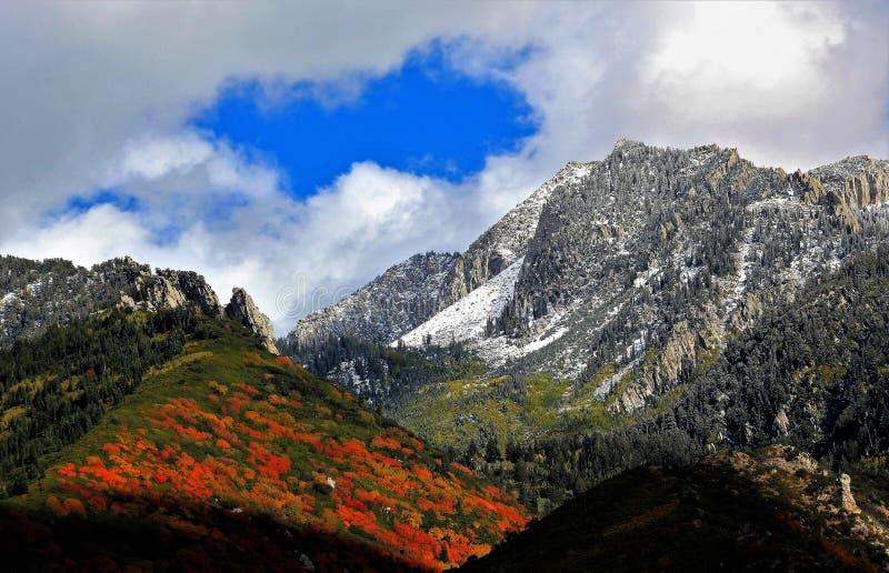 Colori di caduta della neve della montagna dell'Utah fotografia stock libera da diritti