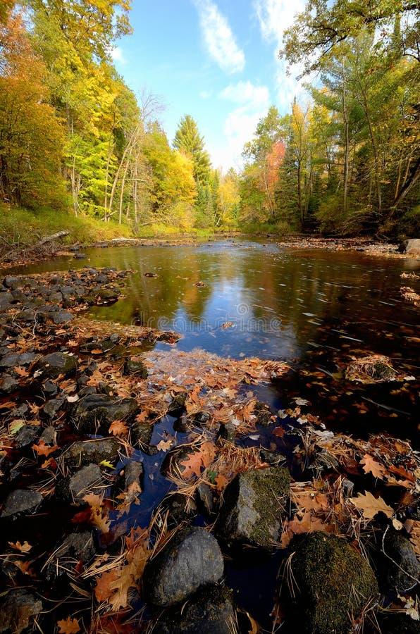 Colori di caduta lungo il fiume del pino immagini stock libere da diritti