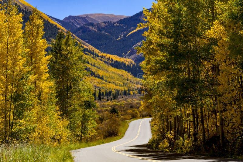 Colori di caduta in montagne di Colorado fotografia stock libera da diritti