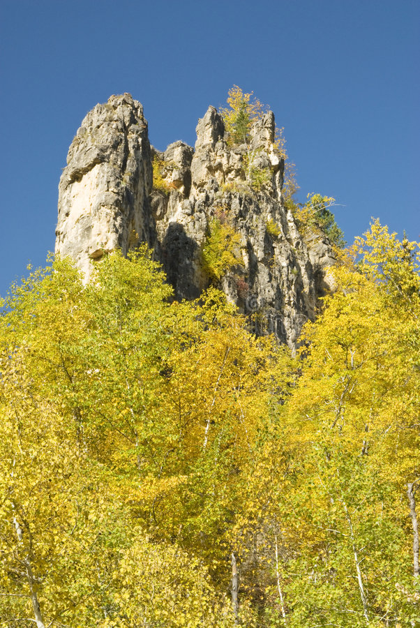 Colori di caduta nel Black Hills immagini stock libere da diritti