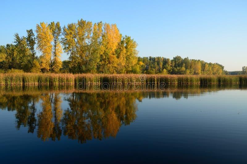 Colori di caduta riflessi su un lago immagini stock