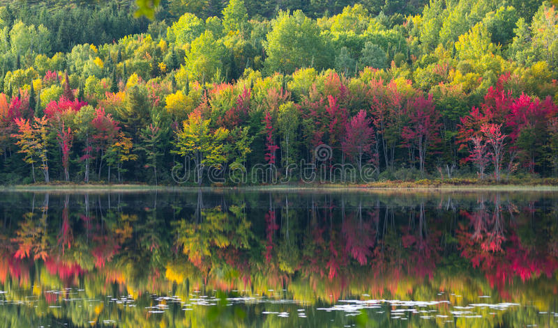 Colori di ottobre riflessi su Corry Lake fotografia stock