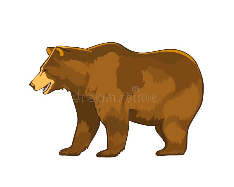 Colori l'illustrazione di vettore dell'orso grigio dell'orso isolata su fondo bianco royalty illustrazione gratis