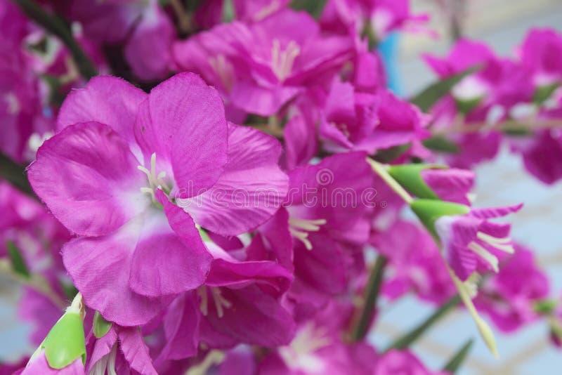 Colori luminosi e bei dei fiori di plastica fotografia stock