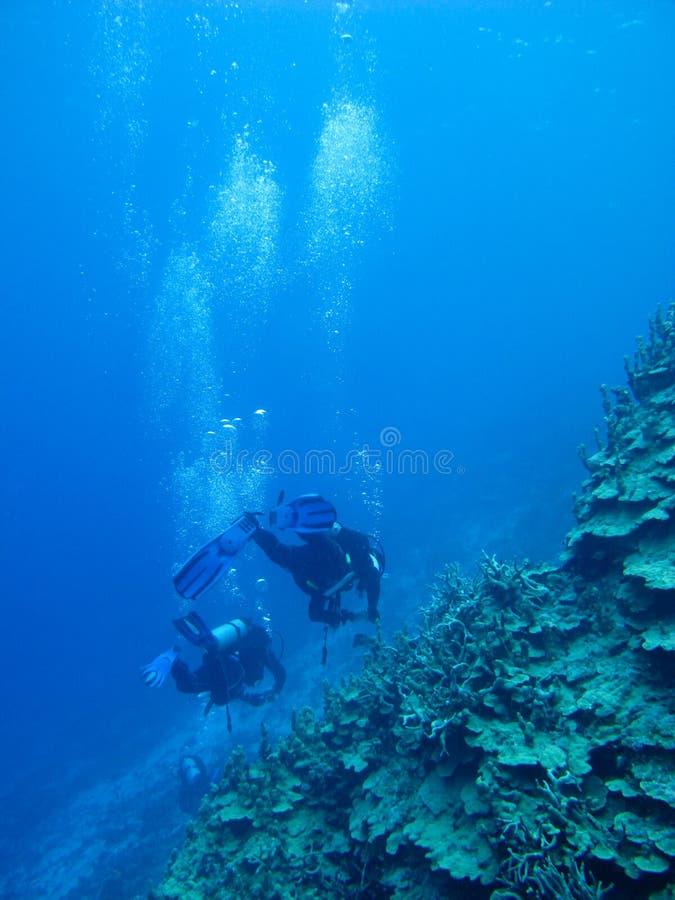 Colorido do recife de corais no mar azul profundo foto de stock