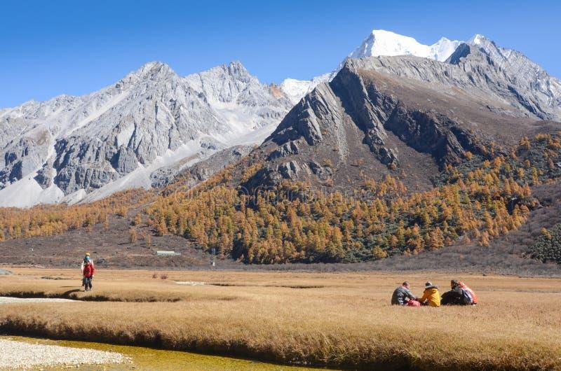 Colorido na floresta do outono e na montanha da neve na reserva natural de Yading imagens de stock royalty free