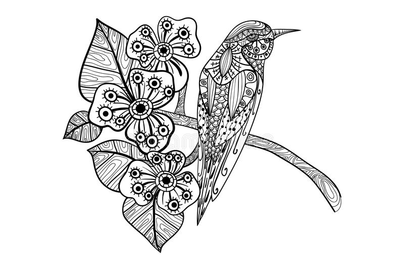 Coloring book adult royalty free illustration
