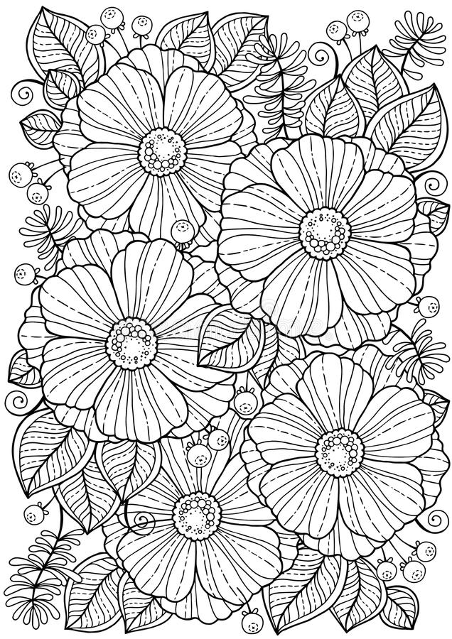 Coloring book for adults. Summer flowers. Vector isolated elements. Vector image for print on clothes, textiles, posters, invitati. Ons royalty free illustration