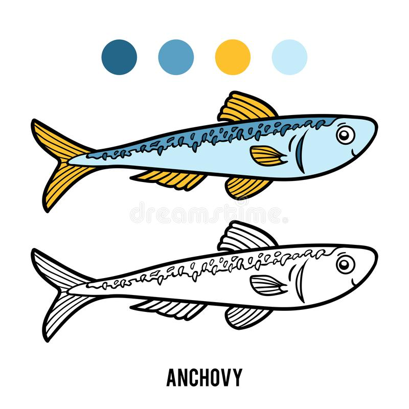 Free Coloring Book, Anchovy Royalty Free Stock Image - 133563926