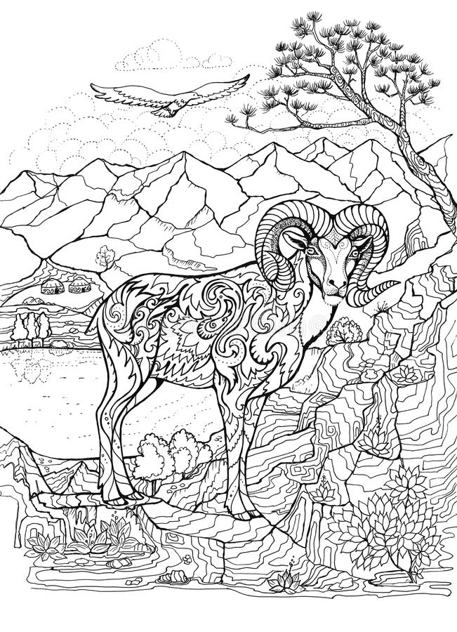 Coloring book with argali, arkhar royalty free illustration