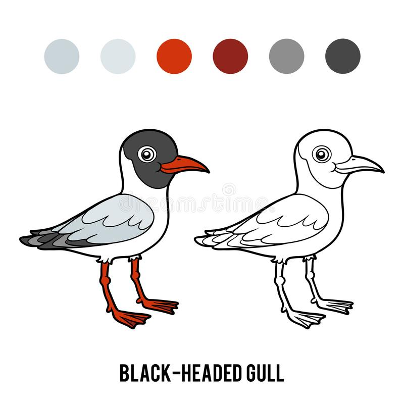 Coloring book, Black-headed gull. Coloring book for children, Black-headed gull royalty free illustration
