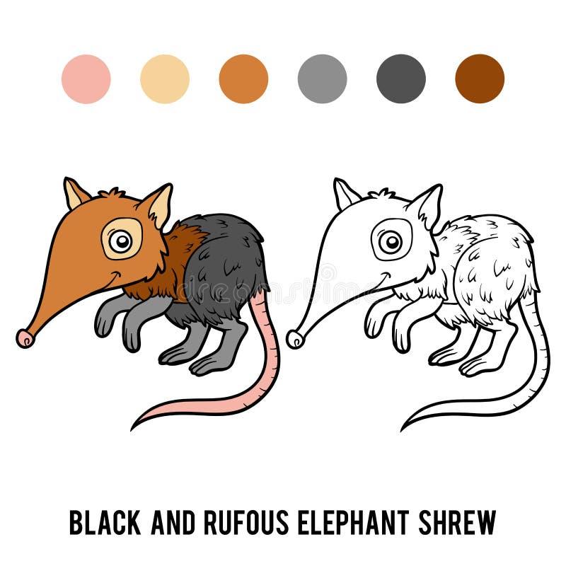 Coloring book, Black and rufous elephant shrew. Coloring book for children, Black and rufous elephant shrew vector illustration