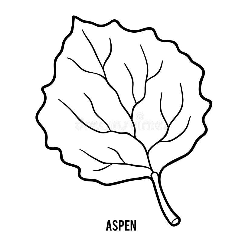Coloring book for children, Aspen. Leaf royalty free illustration