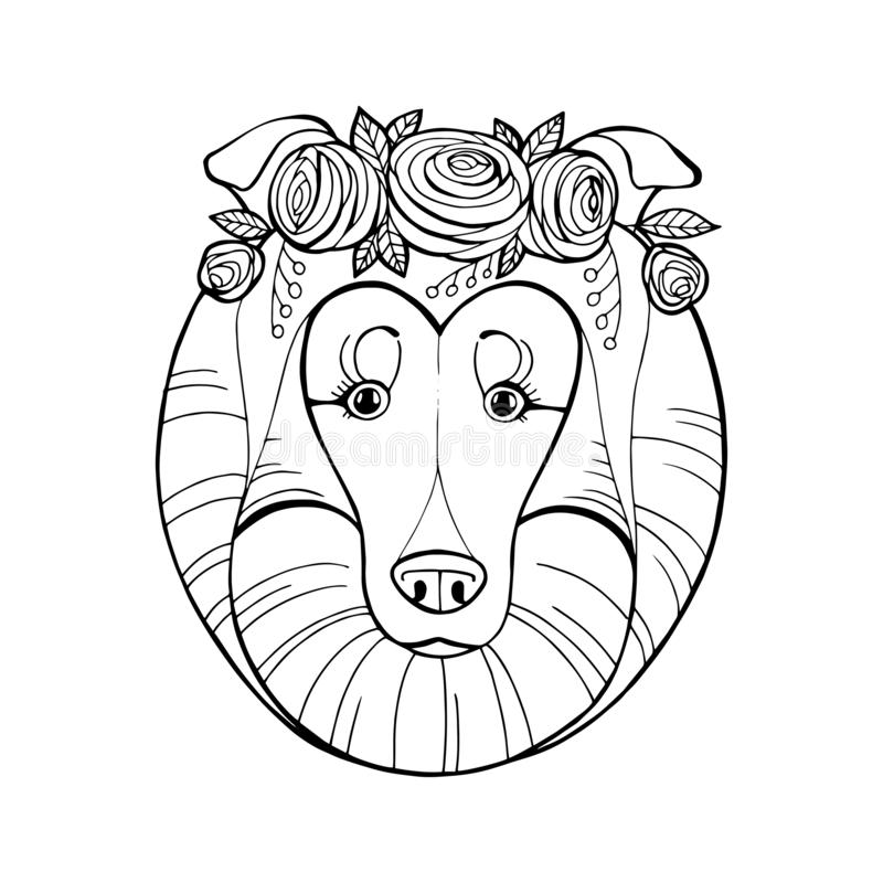 Coloring book for children, Dog breeds: Collie royalty free stock image