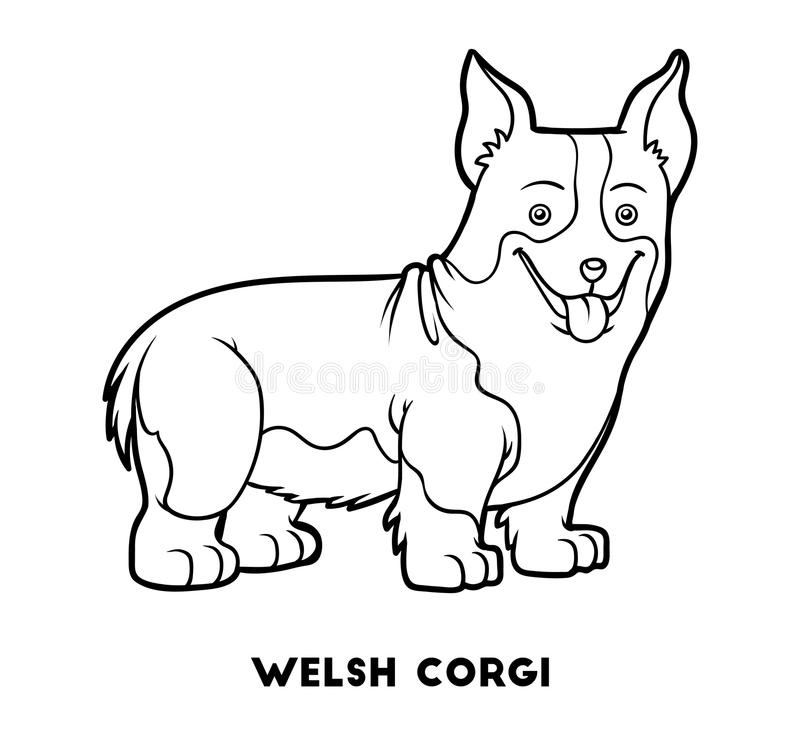 Coloring Book, Dog Breeds: Welsh Corgi Stock Vector - Illustration ...