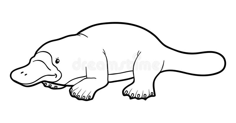 Download Coloring Book For Children Platypus Stock Vector