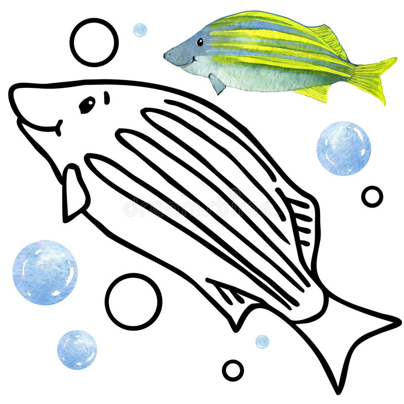 Coloring book coral reef fauna. Cartoon fish illustration for kid Entertainment. Coloring book coral reef fauna. underwater coral reef fish illustration royalty free illustration