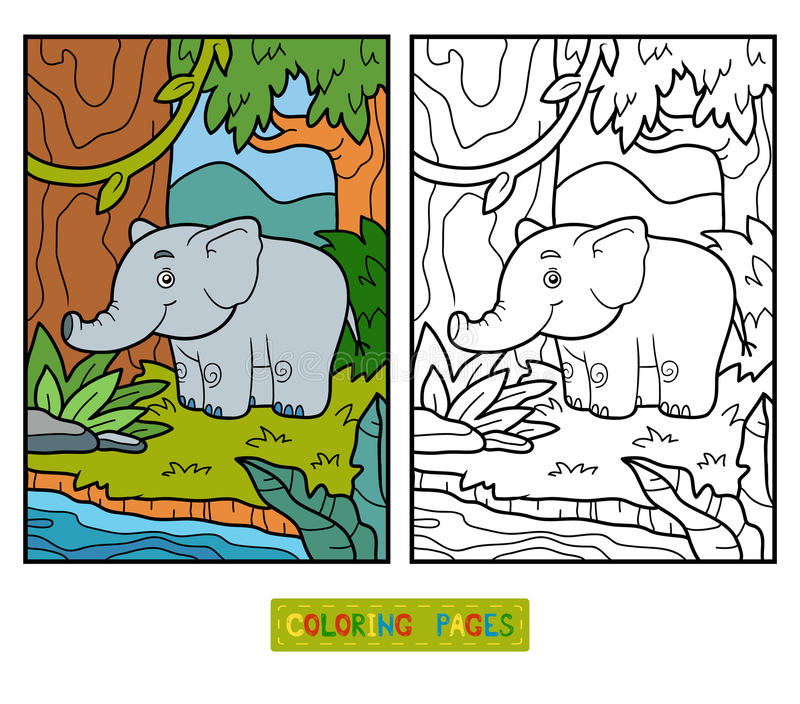 Coloring book, elephant and background. Coloring book for children, elephant and background vector illustration