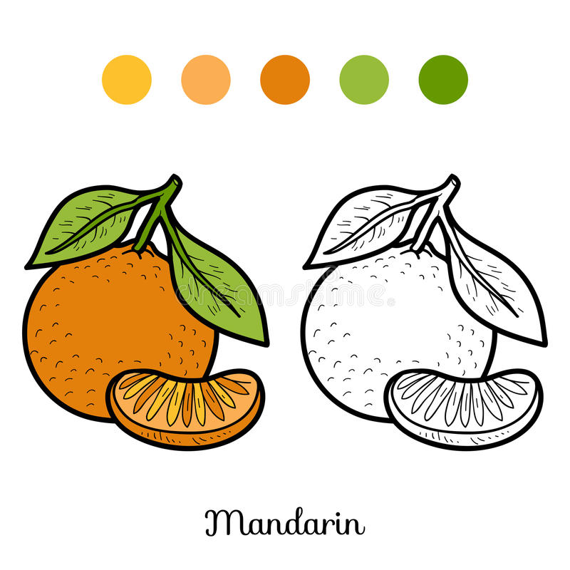 Coloring book: fruits and vegetables (mandarin). Coloring book for children: fruits and vegetables (mandarin vector illustration
