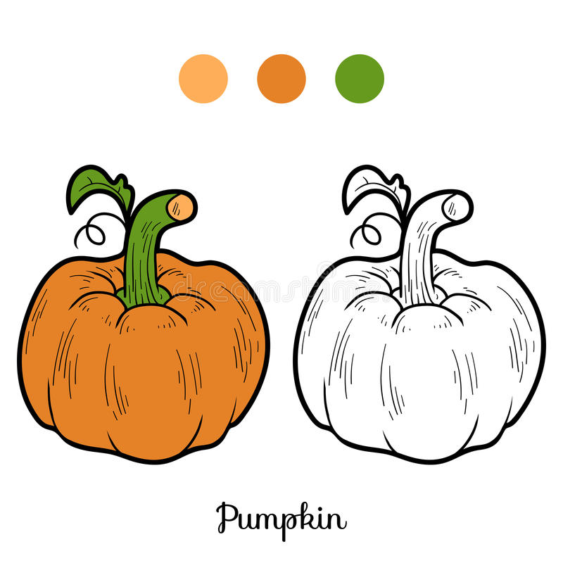 coloring book fruits and vegetables pumpkin stock vector