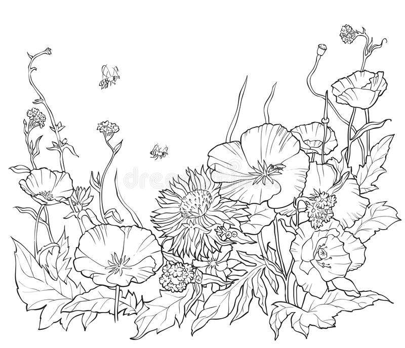 Coloring book with hand drawn flowers. Black and white stock illustration