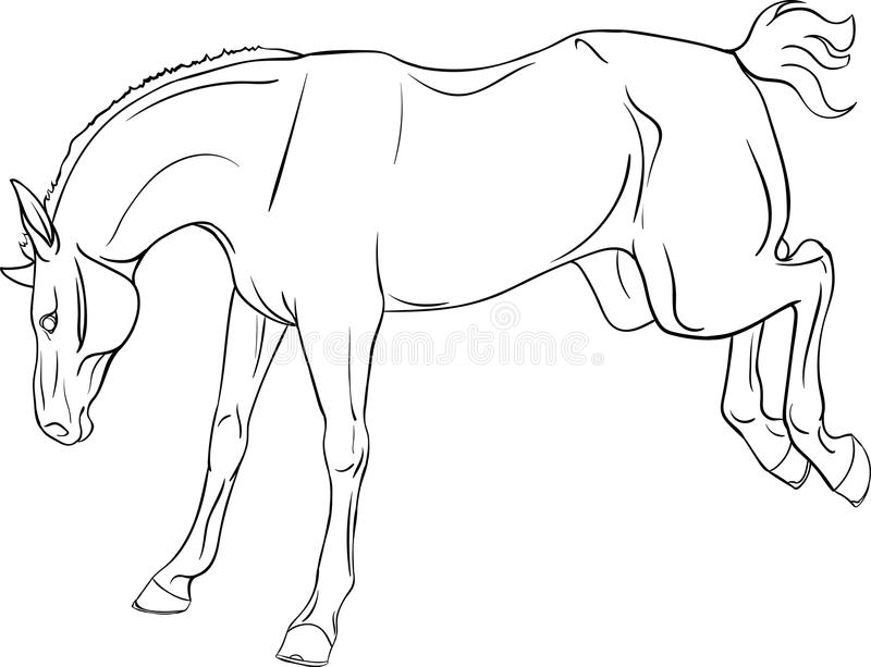 Coloring book with a horse stock image