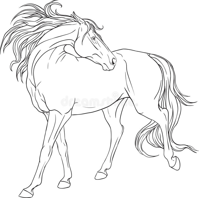 Coloring book with a horse stock vector. Illustration of character ...