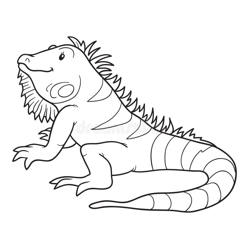Coloring book (iguana) stock vector. Illustration of colorless ...