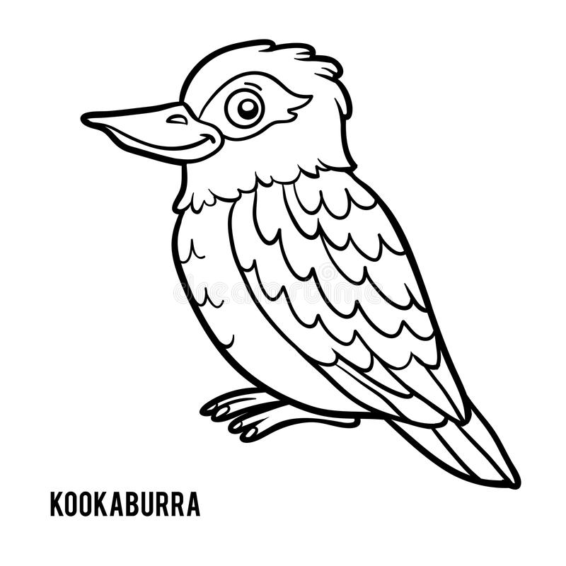 Download Coloring Book Kookaburra Stock Vector Illustration Of Laughing