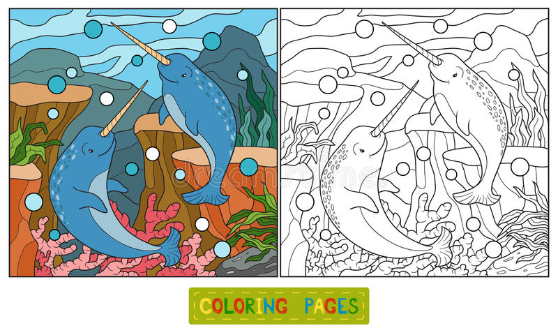 Coloring book (narwhal). Coloring book for children (narwhal royalty free illustration