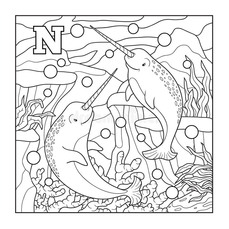 Coloring book (narwhal), colorless illustration (letter N). Coloring book for children (narwhal), colorless illustration (letter N stock illustration