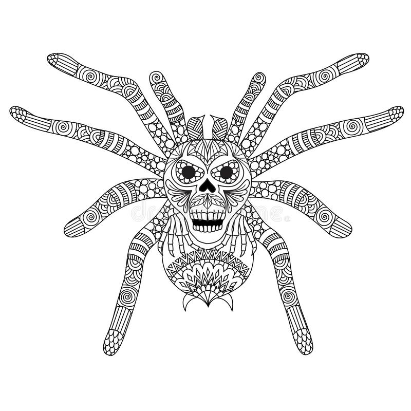 Coloring Book page for adult and kid. Colouring picture of zentangle stylized spooky skull face on spiderman back. Hand drawing il royalty free illustration