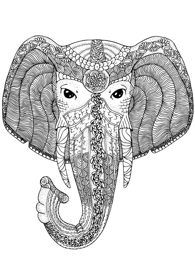Coloring Book Page For Adults Elephant Stock Vector