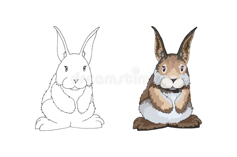 Coloring Book or Page Cartoon Vector Illustration of Easter Bunny royalty free illustration
