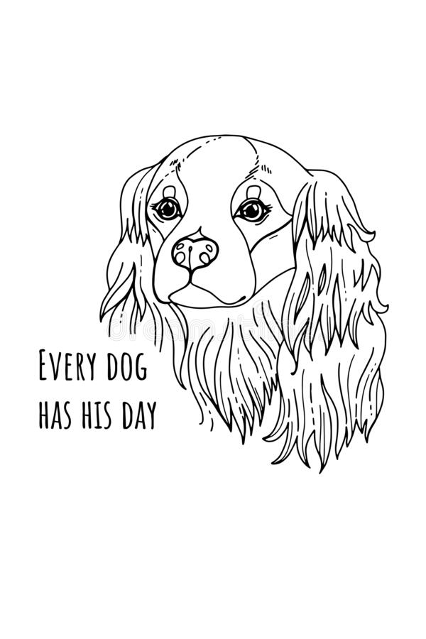 Cavalier King Charles Spaniel Coloring Page | Dog coloring page ... | 900x600