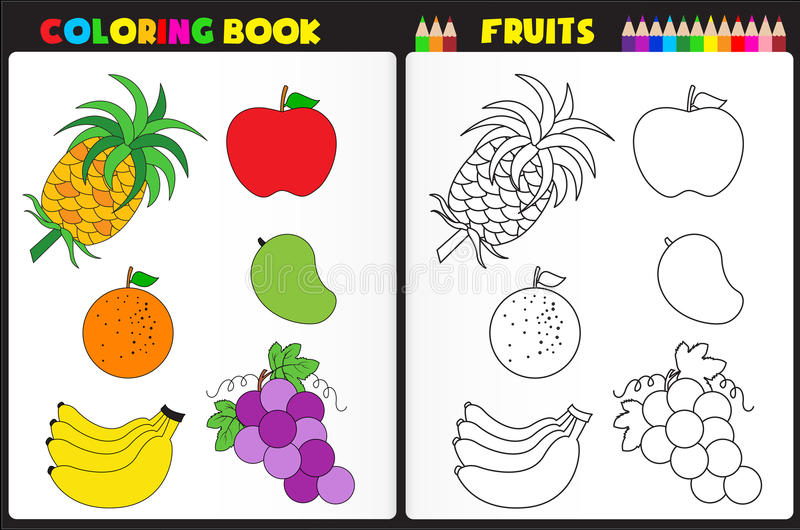 Coloring book page fruits vector illustration