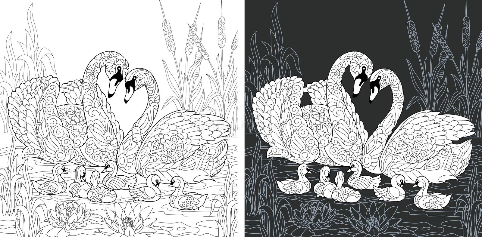 Coloring book page with swan family royalty free illustration