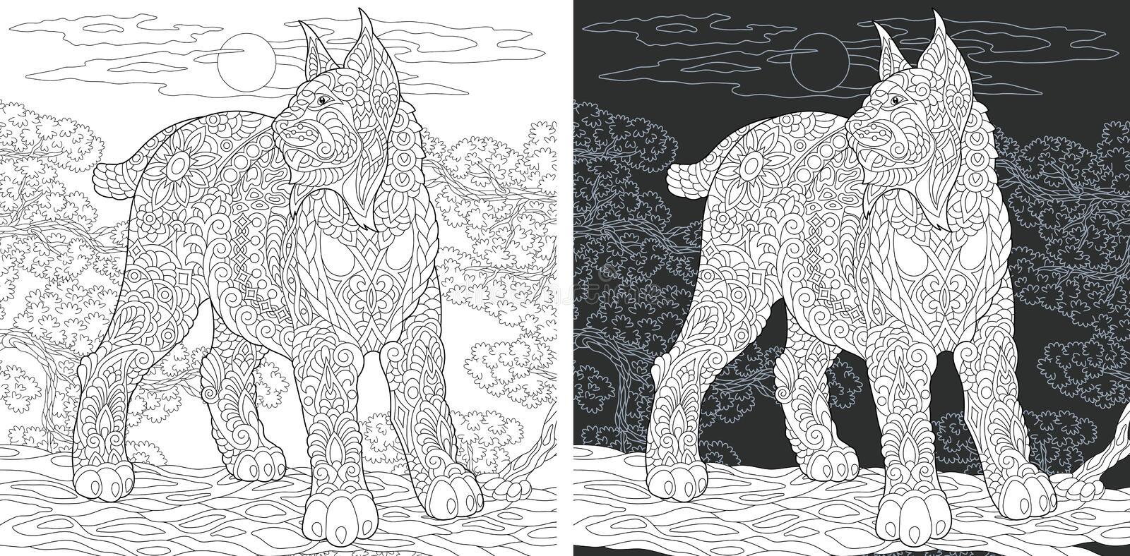 Coloring book page with wildcat. Coloring Page. Coloring Book. Colouring picture with Wildcat drawn in zentangle style. Antistress freehand sketch drawing royalty free illustration