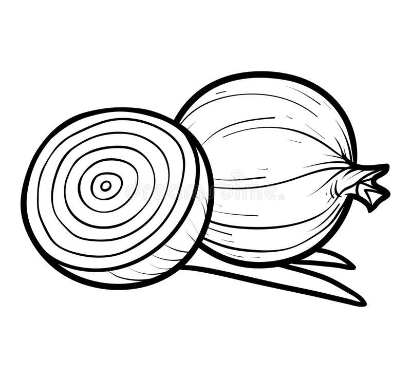 Coloring book, Red onion royalty free illustration