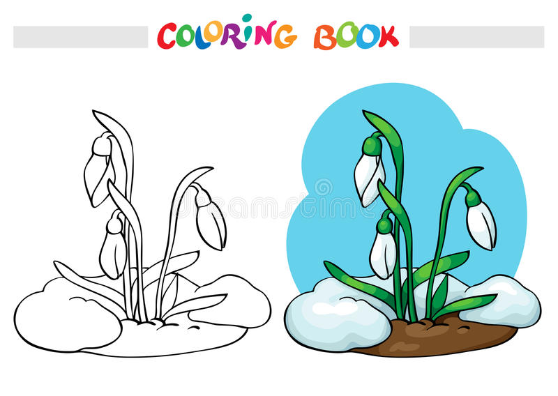 Coloring book. Snow melts, grow the first spring flowers - snowdrops. stock illustration