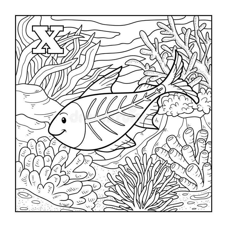 Download Coloring Book X Ray Fish Illustration Letter Stock