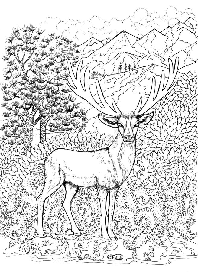 Coloring deer with antlers. On the background of mountains stock illustration