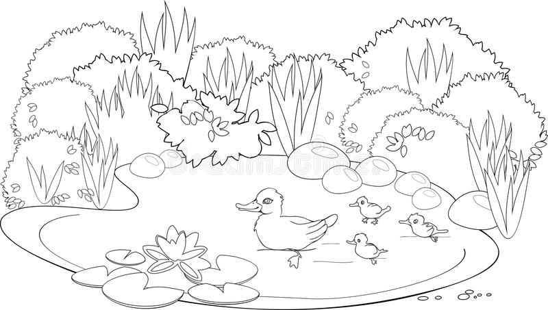 Coloring duck pond stock vector. Illustration of artwork - 61553310