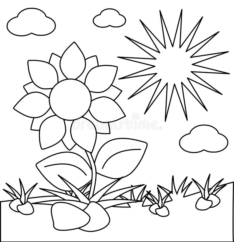 Coloring Flowers Isolated With Sun Stock Illustration - Illustration ...