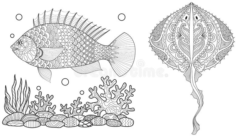 Coloring page for adult colouring book. Underwater world with stingray shoal, tropical fishes and ocean plants. Antistress freehan stock illustration